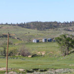 LOWER ELBOW CREEK RANCH